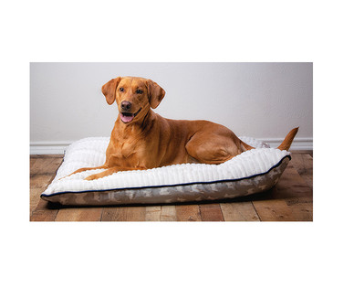 Heart to Tail Pet Bed Assortment View 3