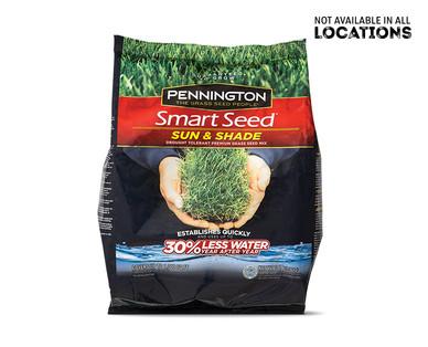 Pennington Smart Seed Sun & Shade Mix