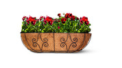 Gardenline Trough Planter Assortment