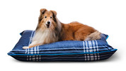 Heart to Tail Pet Bed Assortment