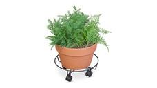 Gardenline Caddy or Bracket Assortment