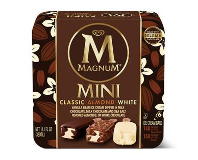 Magnum Mini Variety Pack