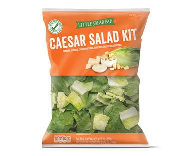Little Salad Bar Caesar Salad Kit