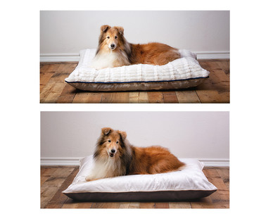 Heart to Tail Pet Bed Assortment View 5