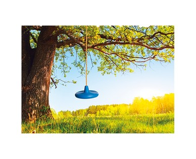 Bee Happy Swing Seat or Disc Swing View 2