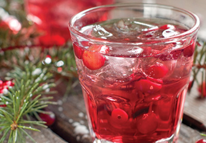 Holiday Cranberry Fizz