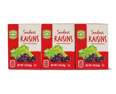 Southern Grove 6 Pack Raisins