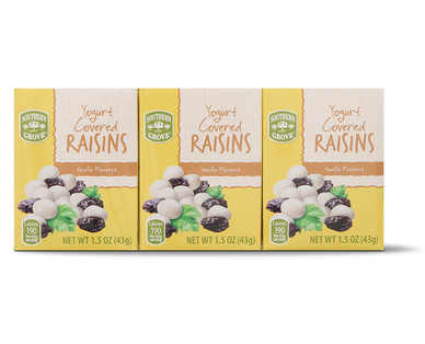 Southern Grove 6-Pack Vanilla Yogurt Raisins