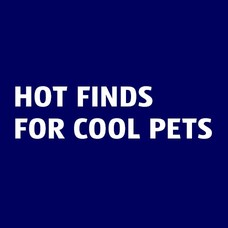 Hot finds for cool pets