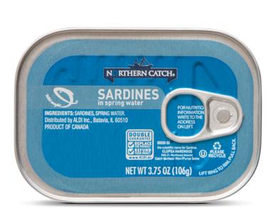 Northern Catch Sardines in Spring Water