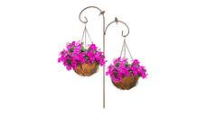 Gardenline Hanging Basket Assortment