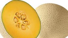 Cantaloupe. View Details.