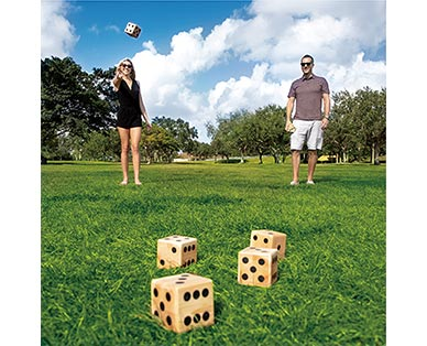 Crane Wooden Dice or Ring Toss View 4