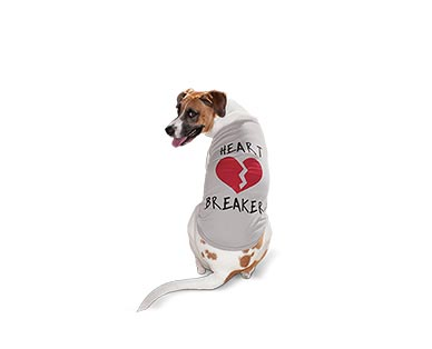 Heart to Tail Valentine's Day Pet Apparel View 2