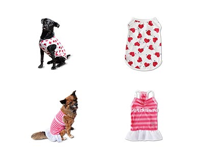 Heart to Tail Valentine's Day Pet Apparel View 3