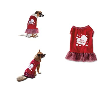 Heart to Tail Valentine's Day Pet Apparel View 4