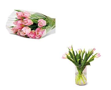 10-Stem Tulip Bouquet Assorted Colors View 3