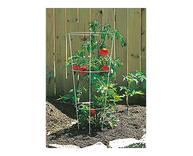 Gardenline Tomato Cage In Use