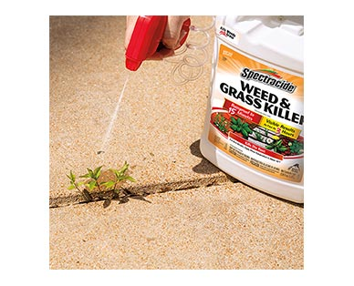 Spectracide Weed & Grass Killer In Use