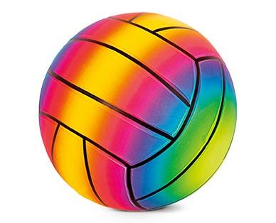 Hedstrom Rainbow Sports Balls Volleyball
