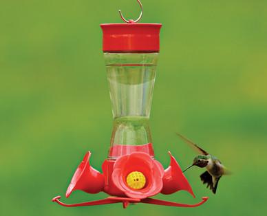 aldi us gardenline hummingbird feeder with nectar. Black Bedroom Furniture Sets. Home Design Ideas