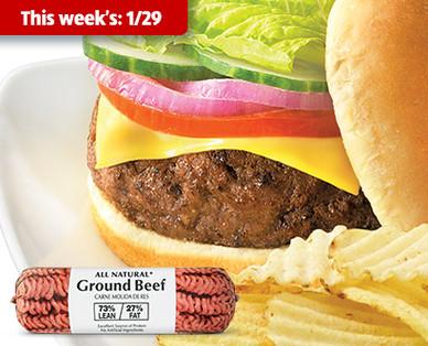 Fresh 73% Lean All Natural Ground Beef Chub